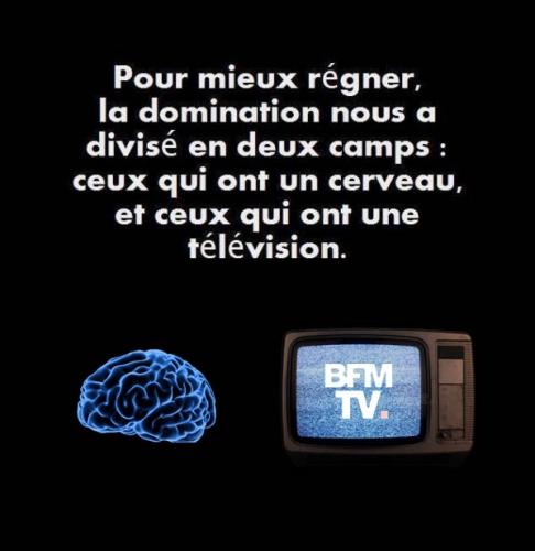 cerveau ou télévision.jpg